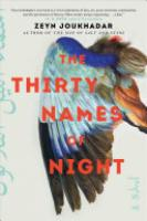 Cover image for The Thirty Names of Night