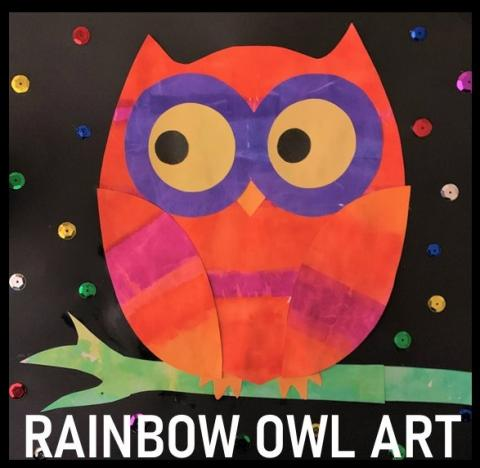 Rainbow Owl Art